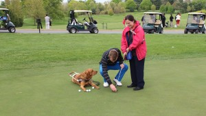 A golf instructor places a golf ball in front of a golfer's putter. The golfer's guide dog is lying to the side and sniffs the instructor.